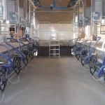 Milking parlours